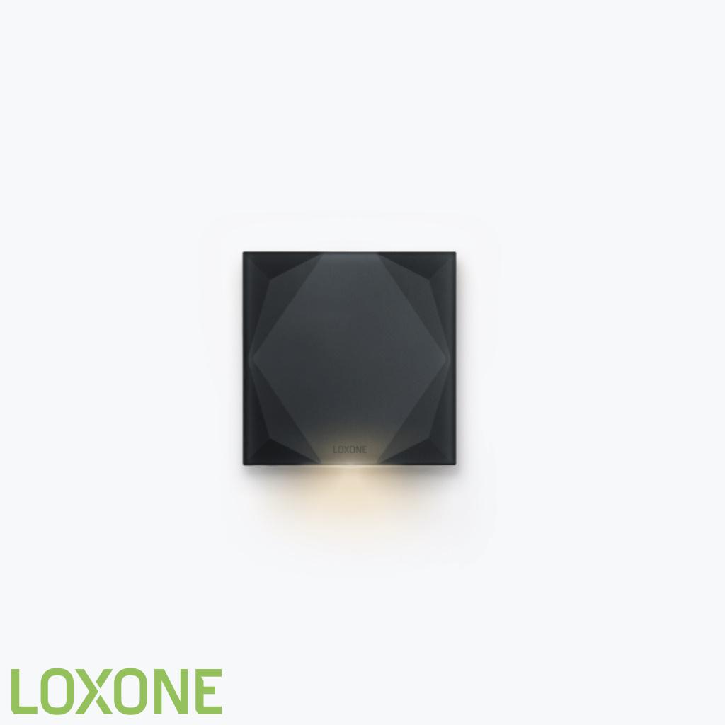 Product: 100398 - Loxone Touch Pure Tree Antraciet GEN 1. Verkocht door Keysoft-Solutions - Hoofdafbeelding