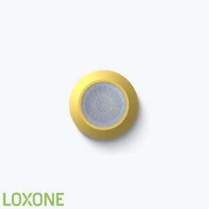 Product: 100498 - Loxone Inbouw Aanwezigheidsmelder Tree Vienna Edition. Verkocht door Keysoft-Solutions - Hoofdafbeelding