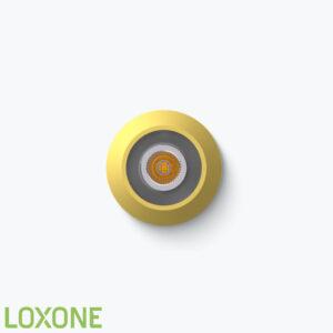 Product: 100491- Loxone LED Spot RGBW Tree Vienna Edition. Verkocht door Keysoft-Solutions - Hoofdafbeelding